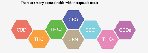 Cannabinoid Graphic 2